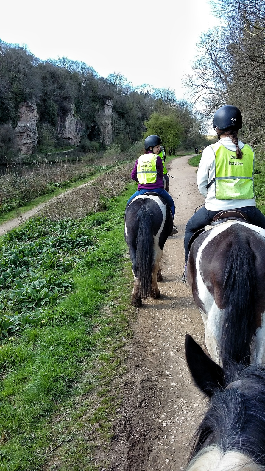A group on coloured horses hack through Cresswell Crags