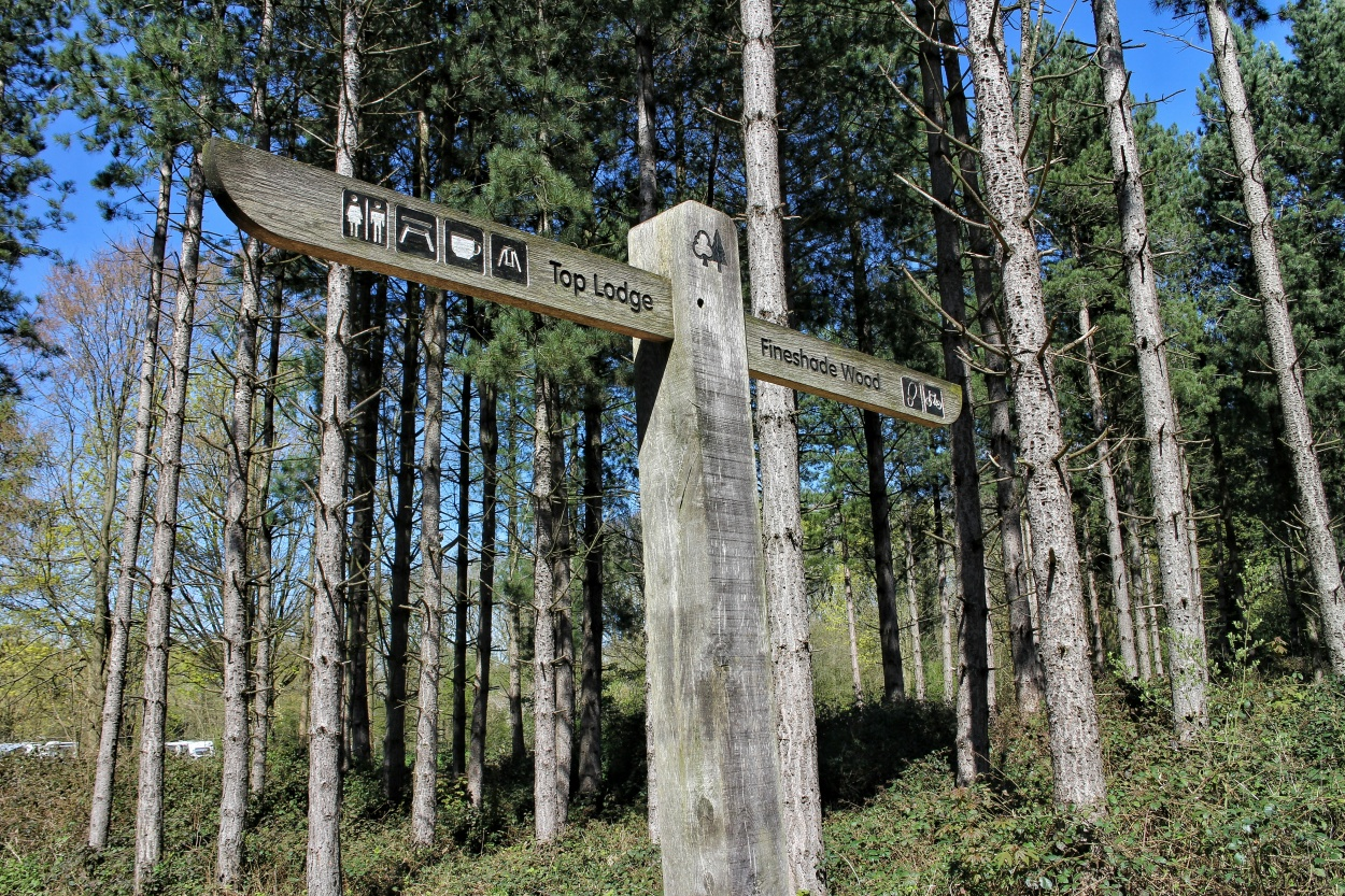 Signpost at Fineshade Woods